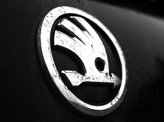 Skoda logo. We Buy Cars. Buy my Skoda. Sell my Skoda.